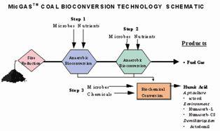 Coal Bio Conversio